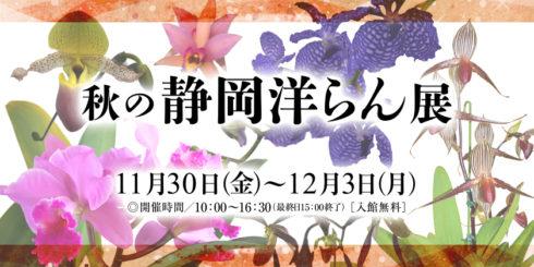 秋の静岡洋らん展イメージ画像